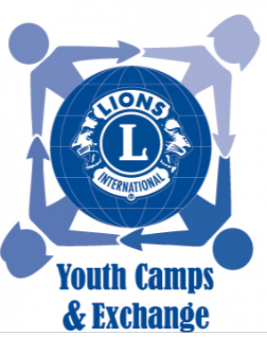 Youth Camps and Exchange
